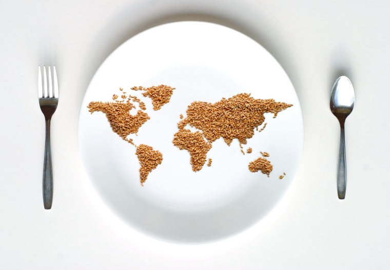 fotolia stock photo World Map of Grain on Plate
